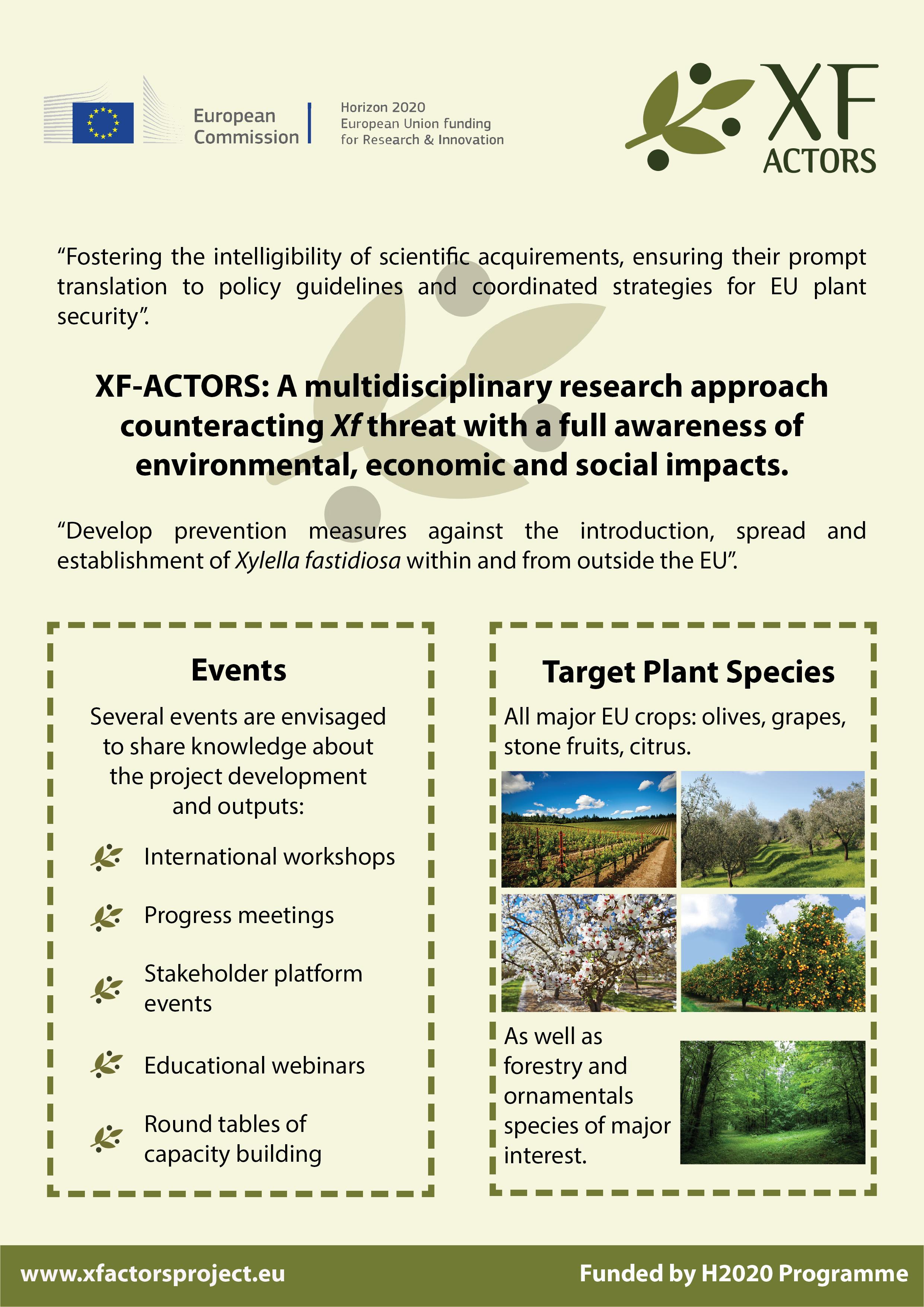 Factsheet 4