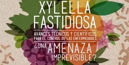 Xylella fastidiosa, an unpredictable threat? Technical and scientific breakthroughs in disease control