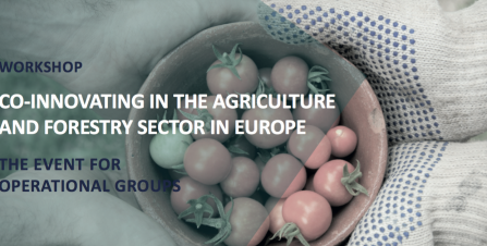 CO-INNOVATING IN THE AGRICULTURE AND FORESTRY SECTOR IN EUROPE