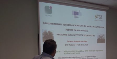 Technical seminar for stakeholders on new regulations for Xylella fastidiosa | Faenza (RA)