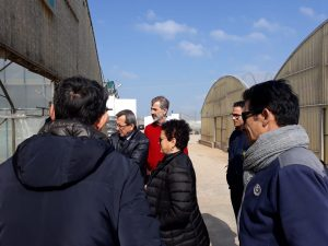 Delegates of the DG-AGRI visited Apulia Xylella