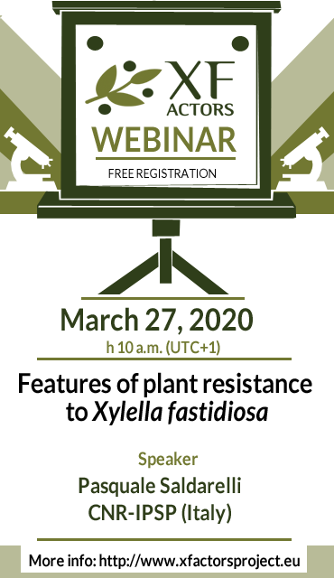 Features of plant resistance to Xylella fastidiosa | webinar