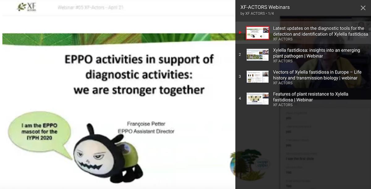 XF-ACTORS all the webinars