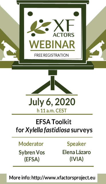 EFSA Toolkit for Xylella fastidiosa surveys | webinar