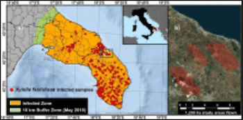 Detection of Xylella fastidiosa infection symptoms with airborne multispectral and thermal imagery: Assessing bandset reduction performance from hyperspectral analysis
